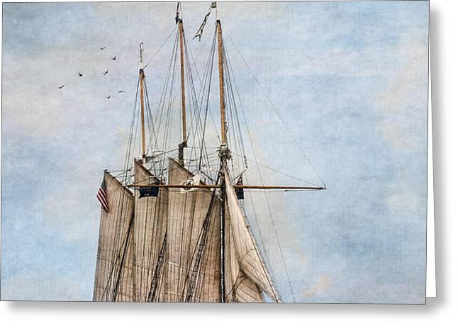 Tall Ship Denis Sullivan Greeting Card by Dale Kincaid