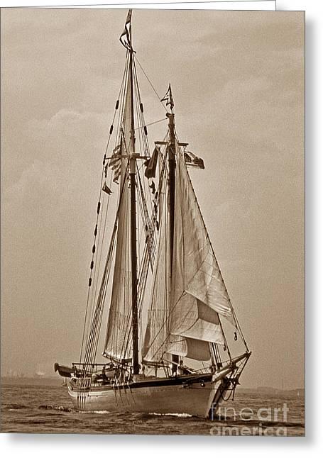 Sailboat Photos Greeting Cards - Tall Ship Harvey Gamage Greeting Card by Skip Willits