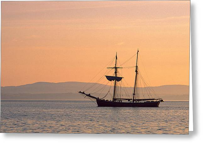 Tall Ships Greeting Cards - Tall Ship In The Baie De Douarnenez Greeting Card by Panoramic Images