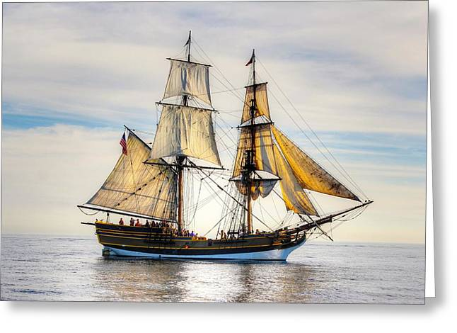 Tall Ships Greeting Cards - Tall Ship Greeting Card by Liz Vernand