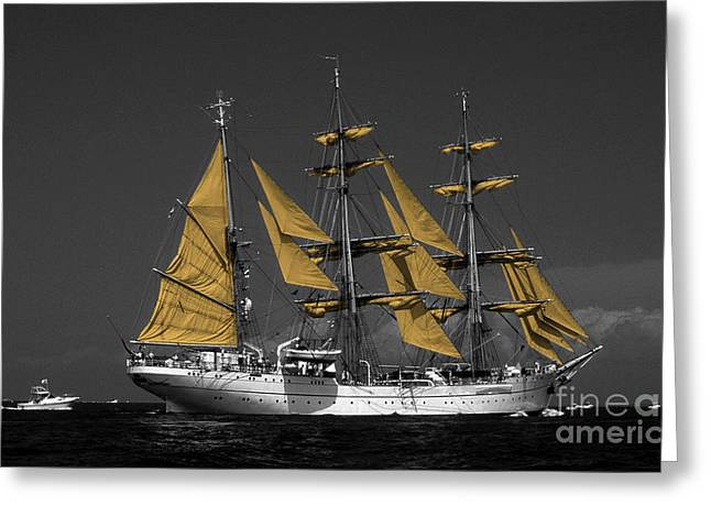 Sailboat Photos Greeting Cards - Tall Ship Greeting Card by Skip Willits