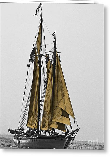 Sailboat Photos Greeting Cards - Tall Ship Under Sail Greeting Card by Skip Willits