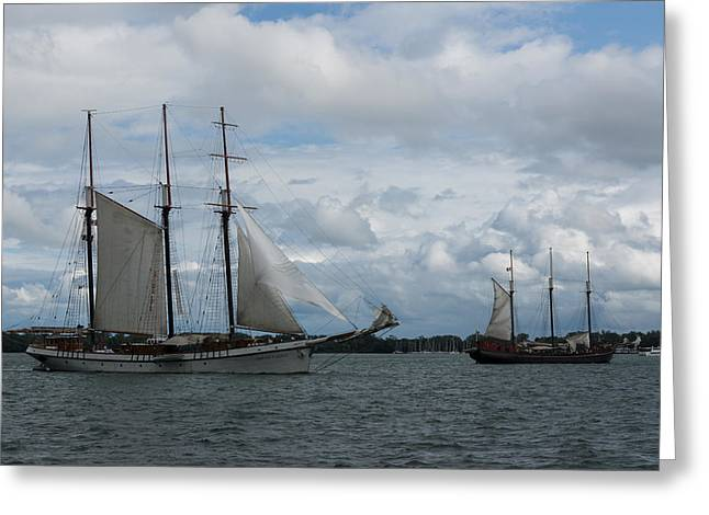 Historic Schooner Greeting Cards - Tall Ships Sailing in the Harbor Greeting Card by Georgia Mizuleva