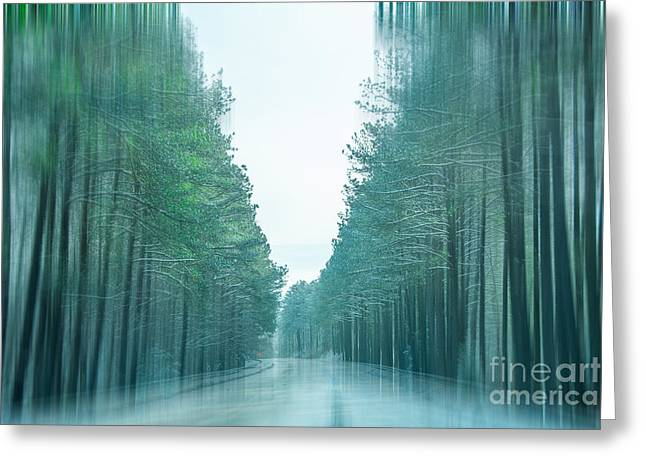 Roadway Greeting Cards - Tall Trees Along The Icy Roadway Greeting Card by Kathy Liebrum Bailey