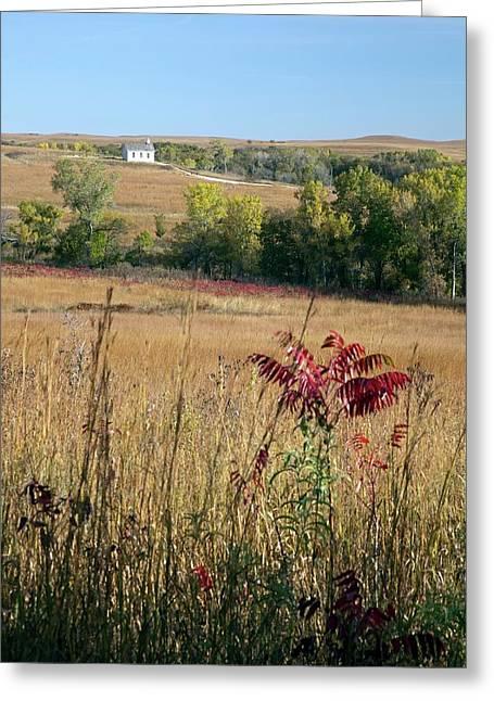 Tallgrass Prairie Greeting Card by Jim West