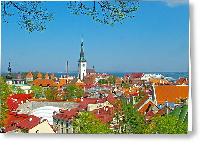 Tallinn Digital Greeting Cards - Tallinn from Plaza in Upper Old Town-Estonia Greeting Card by Ruth Hager