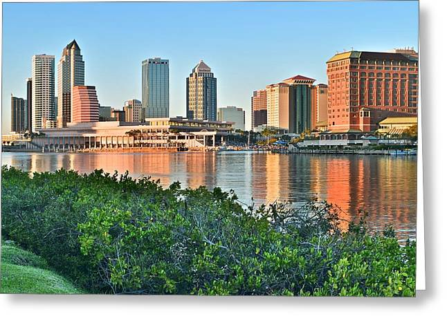 Buccaneer Greeting Cards - Tampa in The Distance Greeting Card by Frozen in Time Fine Art Photography