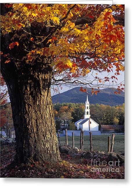 New England Village Greeting Cards - Tamworth Autumn - FM000112 Greeting Card by Daniel Dempster