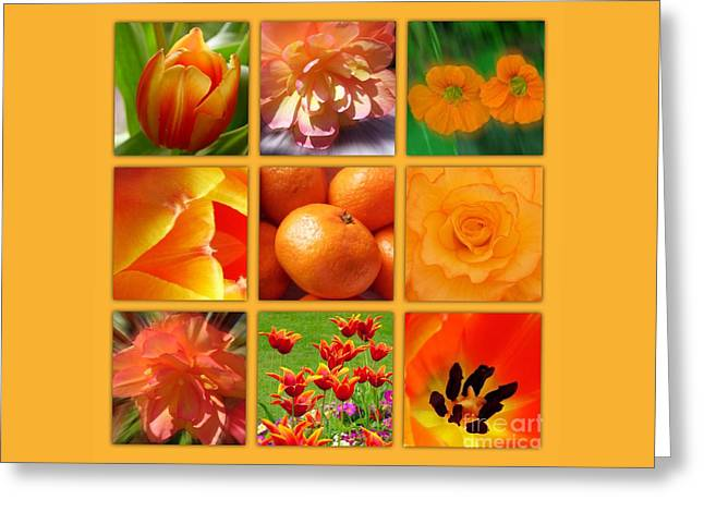 Tangerine Dream Window Greeting Card by Joan-Violet Stretch