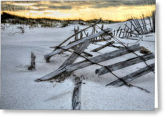 Florida Panhandle Greeting Cards - Tangled  Greeting Card by JC Findley