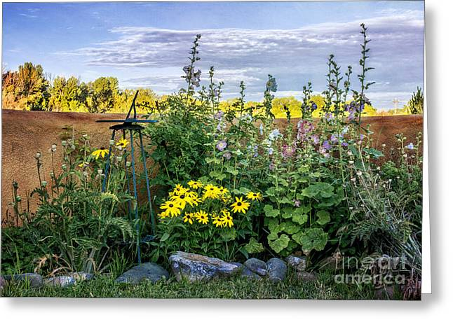 New Greeting Cards - Taos Garden  Greeting Card by Terry Rowe