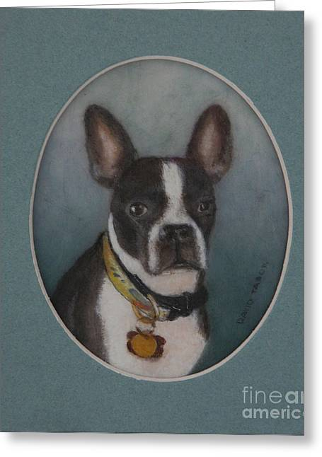 Boston Terrier Greeting Cards Greeting Cards - Tapped-out Louie Greeting Card by David Tabor