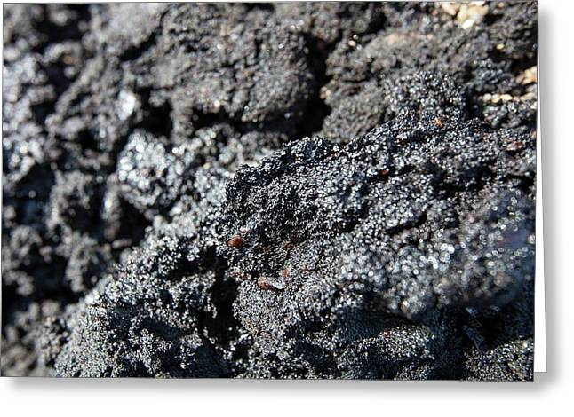 Tar Sand Deposits Greeting Card by Ashley Cooper