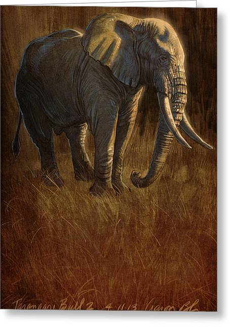 Blaise Greeting Cards - Tarangire Bull 2 Greeting Card by Aaron Blaise