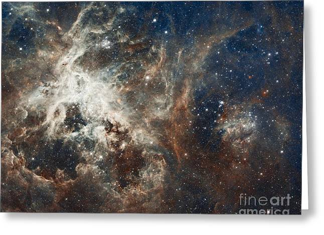 Starbirth Greeting Cards - Tarantula Nebula, Composite Image Greeting Card by Nasa/esa/eso/d. Lennon And E. Sabbi (esa/stsci)