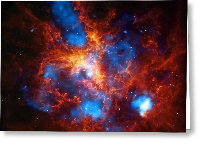 Tarantula Nebula Greeting Card by Jennifer Rondinelli Reilly - Fine Art Photography