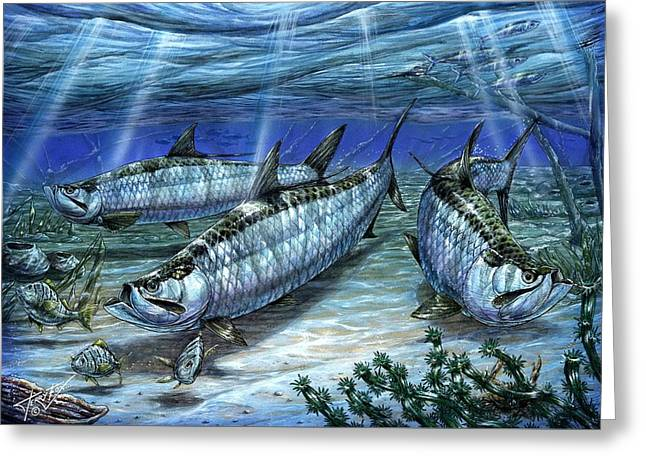 Terry Greeting Cards - Tarpon In Paradise - Sabalo Greeting Card by Terry Fox