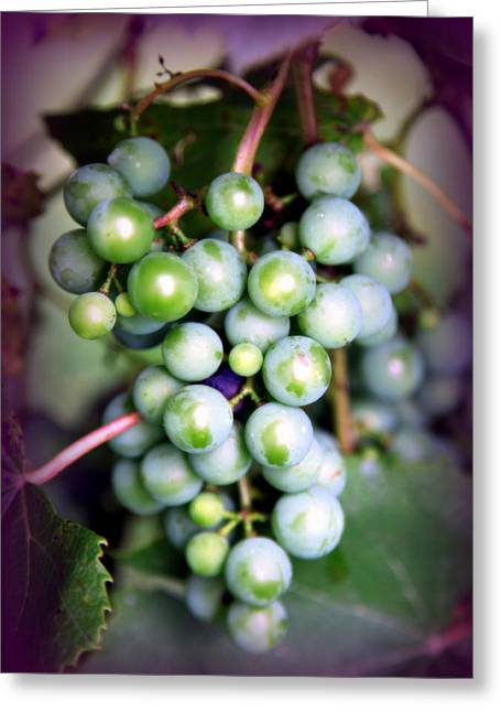 Purple Grapes Photographs Greeting Cards - TASTE of NATURE Greeting Card by Karen Wiles