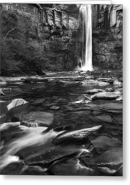 Taughannock Falls State Park Greeting Cards - Taughannock Black And White Greeting Card by Bill  Wakeley