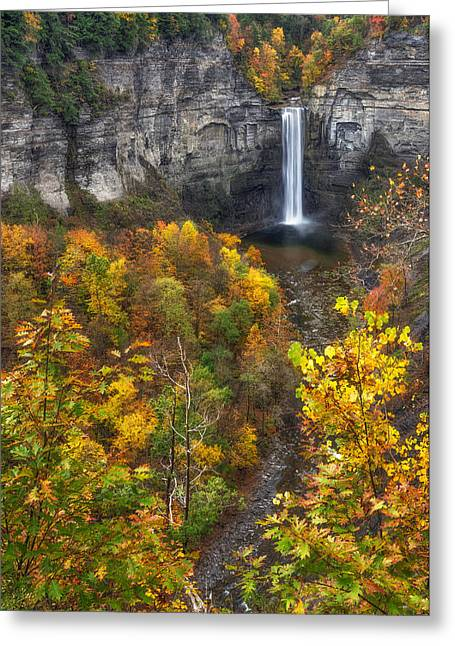 Taughannock Falls State Park Greeting Cards - Taughannock Fall 2 Greeting Card by Mark Papke