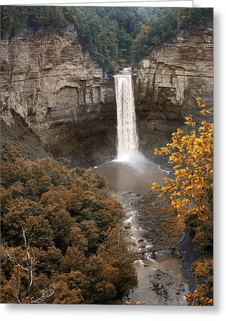 Taughannock Greeting Cards - Taughannock Falls Park Greeting Card by Jessica Jenney