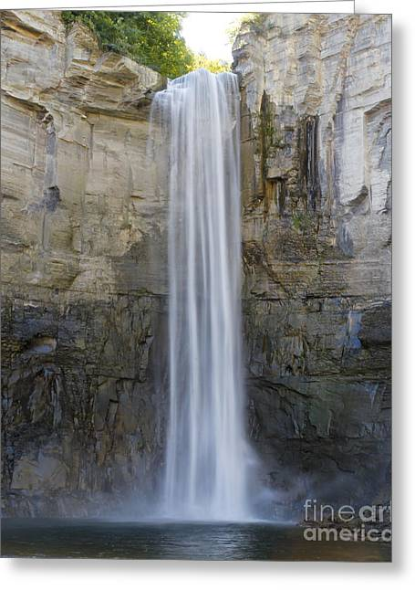 Brook Pyrography Greeting Cards - Taughannock Falls Greeting Card by Rebecca Brooks