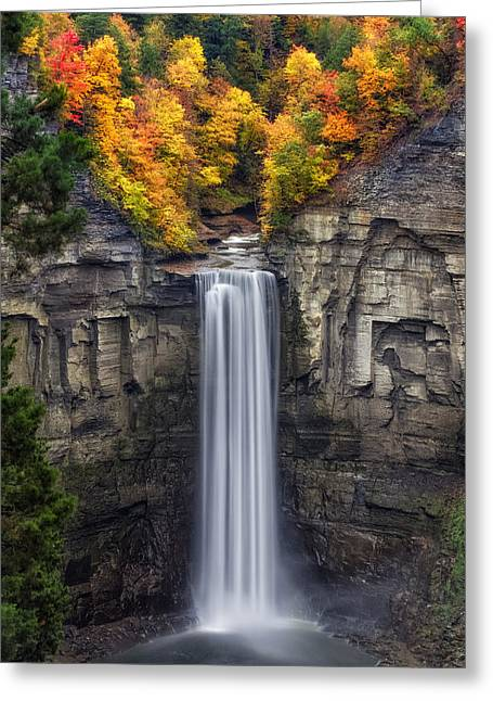 Leaf Change Greeting Cards - Taughannock Greeting Card by Mark Papke