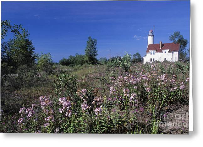 North American Inland Sea Greeting Cards - Tawas Point Light - FS000821 Greeting Card by Daniel Dempster