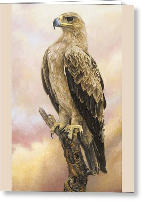 Eagle Greeting Cards - Tawny Eagle Greeting Card by Lucie Bilodeau