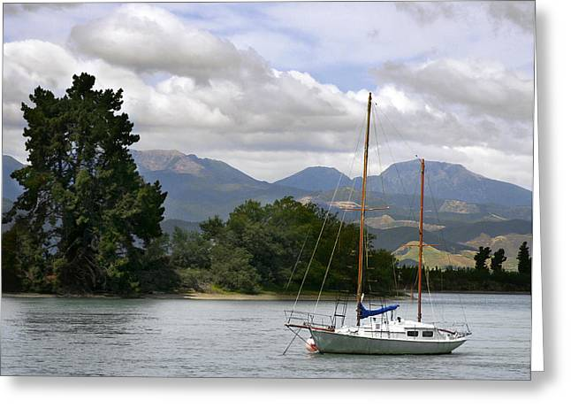 Barbara Smith Greeting Cards - Tazman Bay NZ Greeting Card by Barbara Smith
