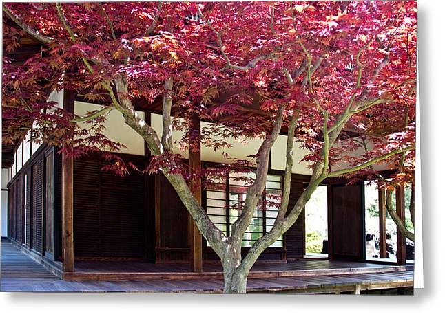 Tea House Thru The Maple Greeting Card by Tom Gari Gallery-Three-Photography