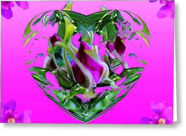 All Occasion Card  Greeting Cards - Tea Rose Delights Greeting Card by Mike Breau