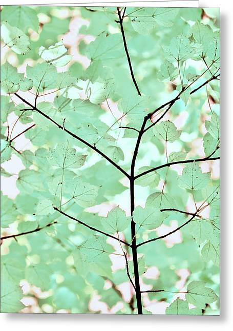 Teal Greens Leaves Melody Greeting Card by Jennie Marie Schell