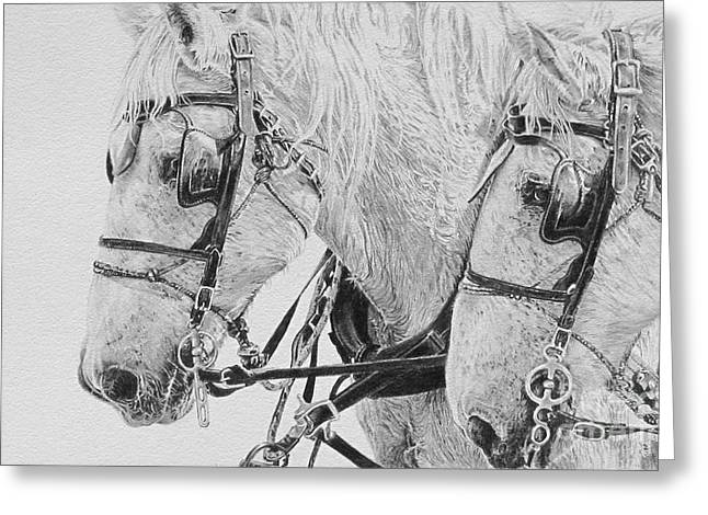 Horse And Cart Drawings Greeting Cards - Teamwork Greeting Card by Kathryn Hansen