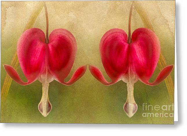 Romance Mixed Media Greeting Cards - Teardrops Of The Heart Greeting Card by Georgiana Romanovna