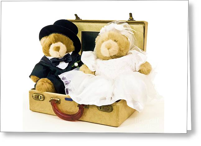 Cute Greeting Cards - Teddy Bear Honeymoon Greeting Card by Edward Fielding