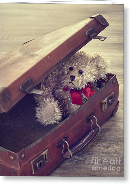 Red Bow Greeting Cards - Teddy Bear In Suitcase Greeting Card by Amanda And Christopher Elwell