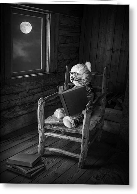 Cute Bear Cartoon Greeting Cards - Teddy Bear reading by Moonlight Greeting Card by Randall Nyhof