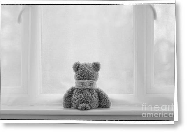 Black Teddy Greeting Cards - Teddy Bear Waiting Greeting Card by Natalie Kinnear