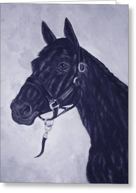 Pat Mchale Greeting Cards - Teddy Black Stalion Greeting Card by Pat Mchale