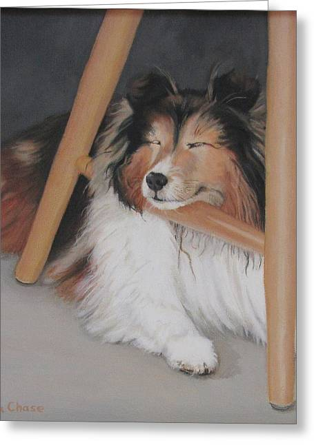 Sandra Chase Greeting Cards - Teddy in My Studio Greeting Card by Sandra Chase