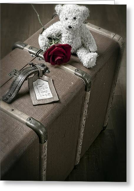 Travelling Greeting Cards - Teddy Wants To Travel Greeting Card by Joana Kruse