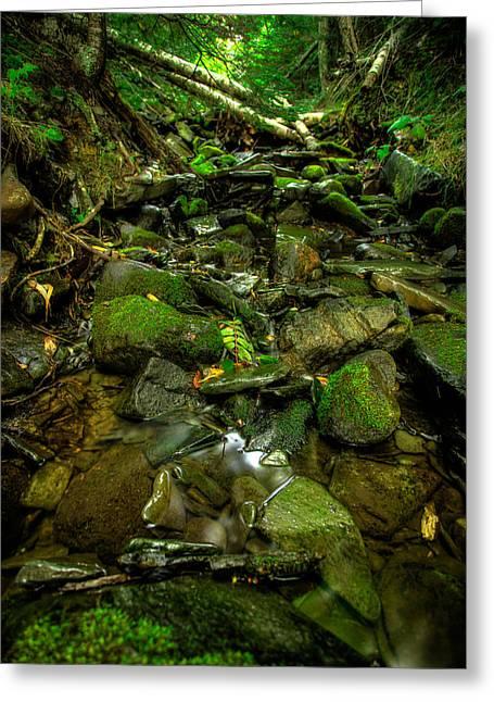 40mm Greeting Cards - Tee Harbour Creek Greeting Card by Jakub Sisak