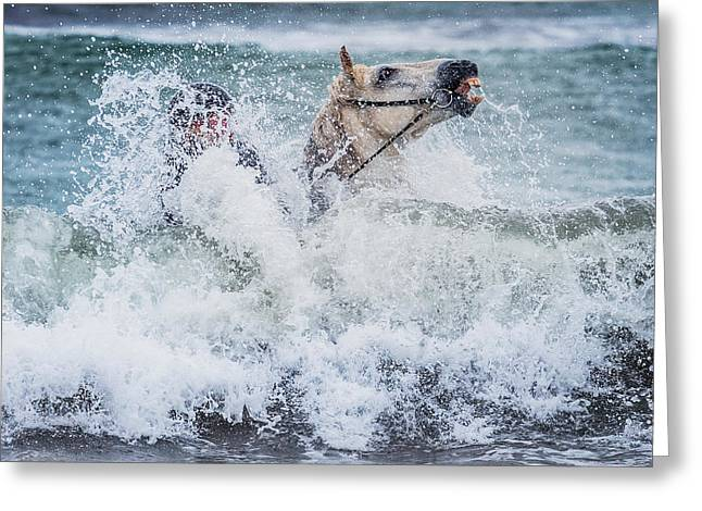 Safety Gear Greeting Cards - Teenager Horseback Riding In The Sea Greeting Card by Panoramic Images