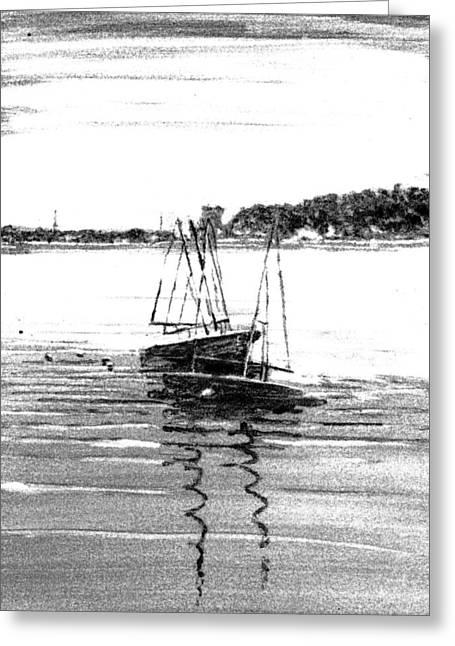 Coastal Maine Mixed Media Greeting Cards - TEIA 420s Greeting Card by Wilson Stewart