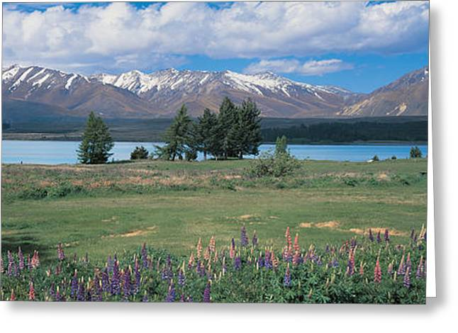 Snow Capped Greeting Cards - Tekapo Lake South Island New Zealand Greeting Card by Panoramic Images