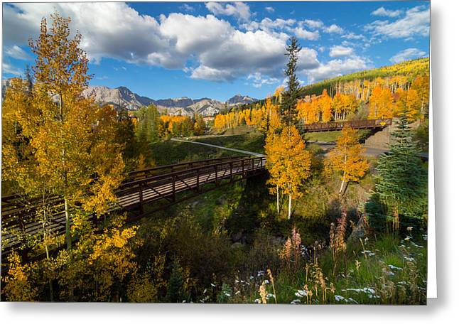 Great Greeting Cards - Telluride Fall Colors Greeting Card by Michael J Bauer
