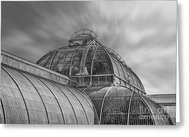 Kew Greeting Cards - Temperate house Kew Gardens Black and White Greeting Card by Chris Thaxter