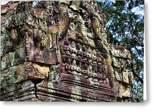 Tree Roots Greeting Cards - Temple 2 Greeting Card by Chuck Kuhn