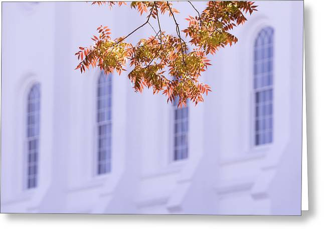 Late Fall Greeting Cards - Temple Accent Greeting Card by Chad Dutson